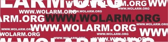 wolarm_negh